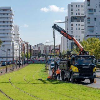 Végétalisation des voies dans le centre-ville d